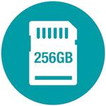 256GB SD Card